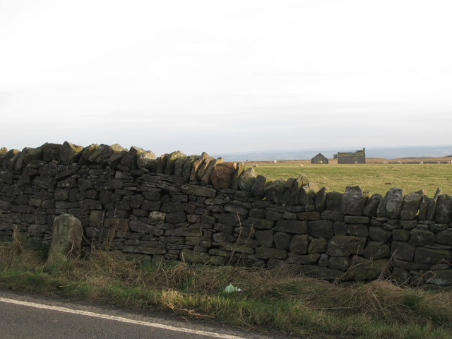 Drystone wall and pastures west of Milecastle 24