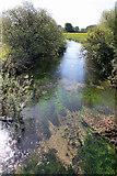 TA0256 : River Hull from Hallimanwath Bridge by Peter Church