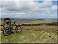 NS7433 : Nutberry Hill Trig point by Alan Pitkethley