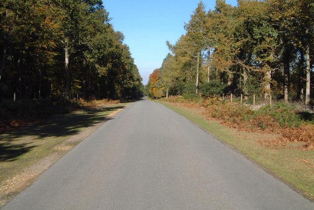 Road through Godshill Inclosure