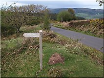 SS9043 : Start of Dicky's Path by Derek Harper