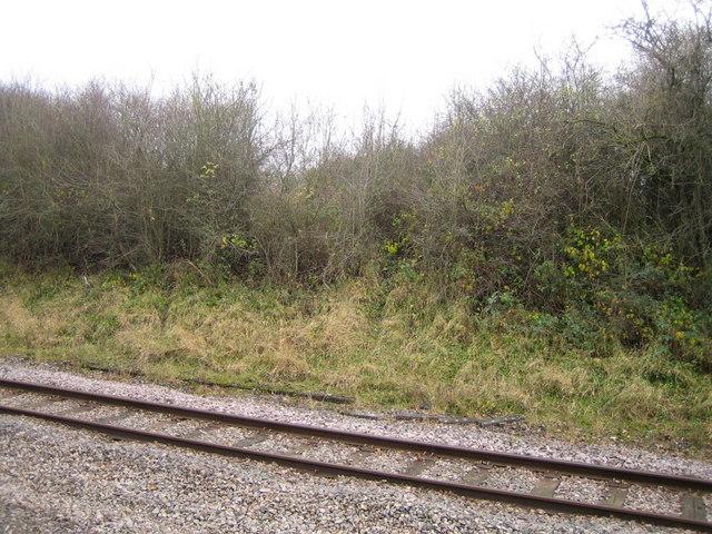 Dismantled railway 5