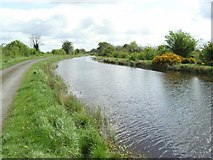 N5349 : Royal Canal at Banagher, Co. Westmeath by JP