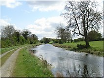 N5849 : Royal Canal at Thomastown, Co. Westmeath by JP