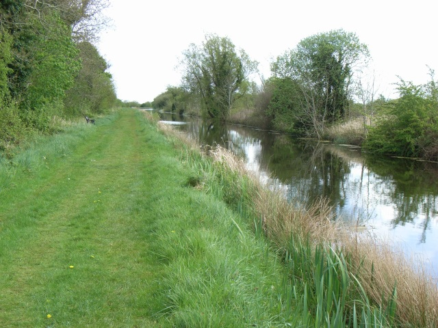 Royal Canal East of Hill of Down, Co. Meath