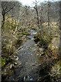 NN1905 : River Goil by Iain Thompson