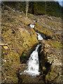 NS2499 : Cascade in Ardgartan Forest by Iain Thompson