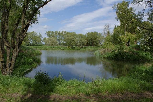 Wild Fowl Reserve on Ashmead Drove