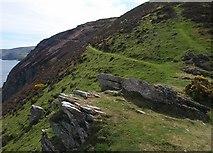 SS6549 : Coast path above Highveer Point by Derek Harper