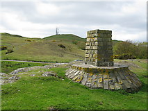 NS2916 : Viewpoint on Brown Carrick Hill by G Laird