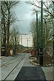 SK3455 : Tram line to the Glory Mine terminus of the Crich Tramway by P L Chadwick