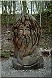 SK3455 : The Green Man at Crich Tramway Village by P L Chadwick