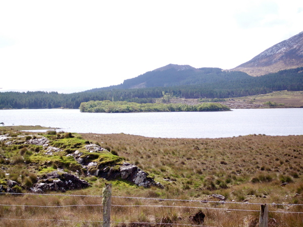 Lough Inagh - the northern end