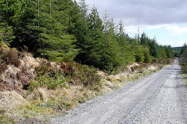 Suí Con (Seecon) forest