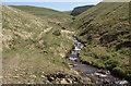 SS9490 : Nant Cwm-y-fuwch and a view eastwards up Cwm y Fuwch by eswales