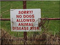 """T0429 : """"Sorry! No dogs"""" sign near Monroe, Castlebridge by David Hawgood"""