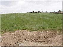 T0429 : Pasture near Monroe, Castlebridge by David Hawgood