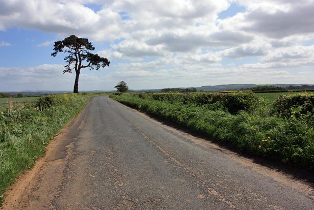 The Centenary Way, Kirkham to Firby