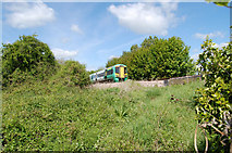 TQ0004 : Train Approaching Ford Bridge by Chris Richardson