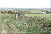 SW4028 : Wayside cross near Boswarthen by Rod Allday