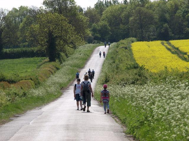 Waendel Walk