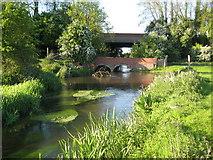 TL1504 : River Ver near Hedges Farm by Nigel Cox