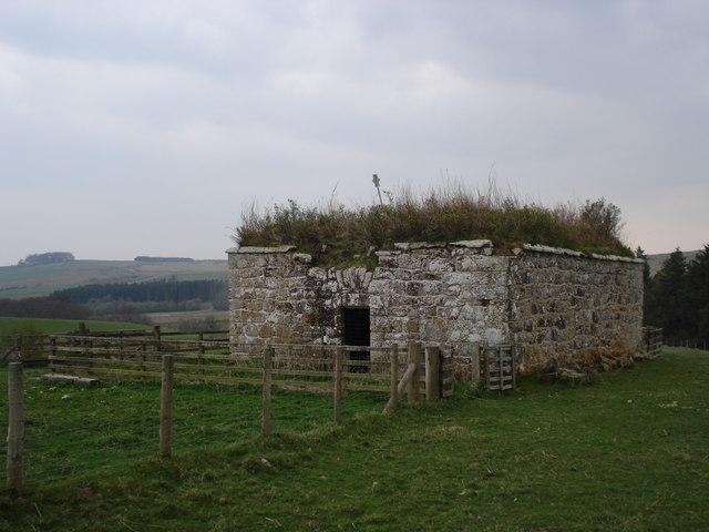 Bastle near High Shaw Farm