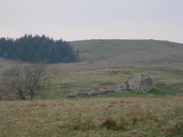 Another ruinous bastle near High Shaw Farm