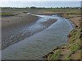 NY1957 : Coastline, Newton Marsh by Andrew Smith