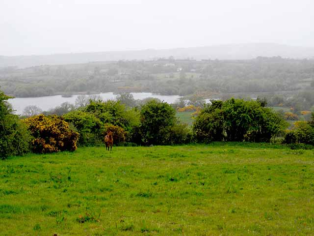 North end of Lough Gowna
