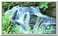 SO7699 : A cascade in Badger Dingle by Ian Slater