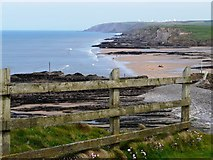 SS2006 : Bude Haven, Summerleaze Beach by Tom Jolliffe