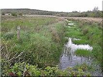 H0509 : Killyfinnan Lough by Oliver Dixon