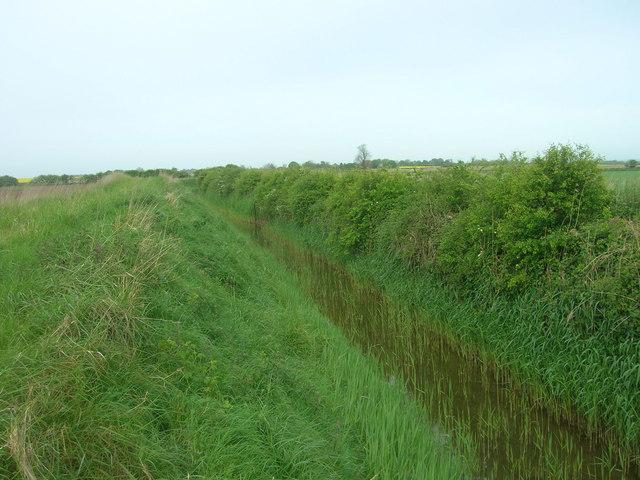 Field Drain, West of Lissett Bridge