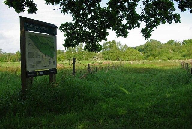 Sawbridgeworth Marsh