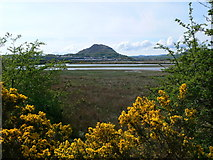 SH5838 : View across the marshes from the eastern end of Y  Cob by Eirian Evans