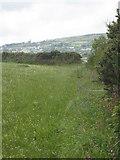 SW7239 : Footpath leading to Mennergwidden by Rod Allday