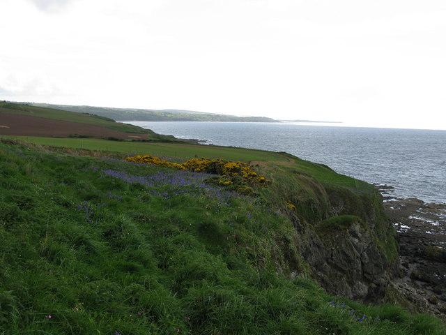 Coastal Cliff south of Dunure