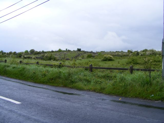 Rough grazing to the east of the N67, Ballyclery Townland