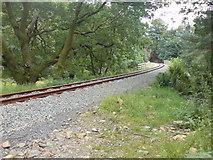 SH5946 : The Welsh Highland Railway near Nantmor by Kenneth Yarham