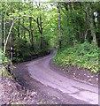 SN6409 : Road to Cwmcathan by John Duckfield