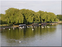 TL1998 : Tranquility on the River Nene by Michael Trolove