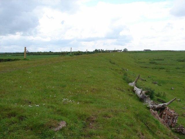 Rockcliffe Marsh Dyke