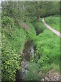 SX9394 : Path beside the stream flowing into the Mincinglake Valley by Sarah Charlesworth