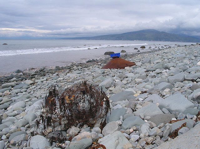 Flotsam, Llwyngwril shore