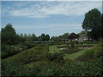 TQ3005 : Scented garden by Paul Gillett