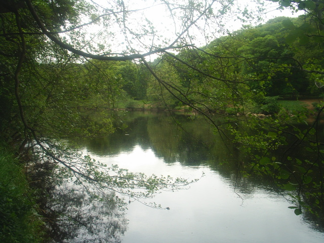 The River North Tyne