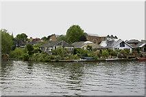 TQ1667 : Thames Ditton Island by David Kemp