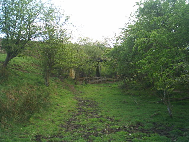 Road bridge over the disused Hexham to Allendale railway