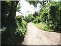 SK6444 : The Bridle Road looking South East by johnfromnotts